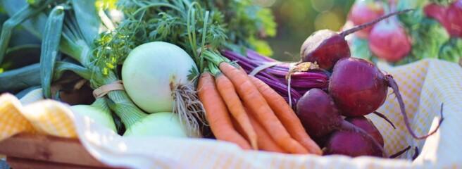 Експерт прогнозує подорожчання овочів в Україні до кінця червня на 20-30%