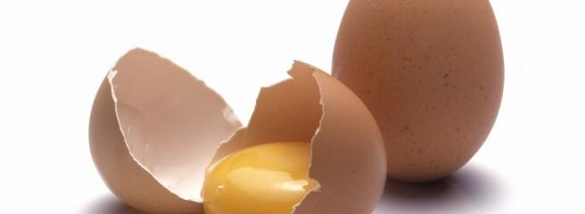 Виробництво яєць в Україні скоротилося на 0,6%