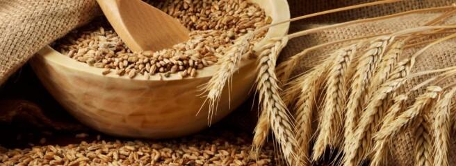 На експорт пішло 39 млн т українського зерна