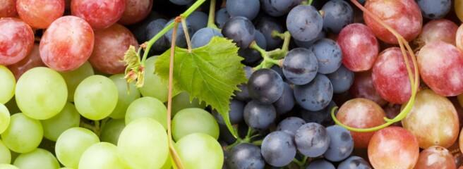 Частка рожевого вина зросла в світі до 11%