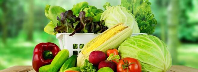 Падіння виробництва сільськогосподарської продукції в Україні в січні-червні 2020 року прискорилося до 18,7%