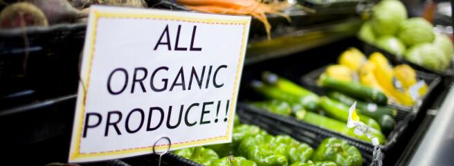 Мировой рынок органических продуктов уже оценивается более чем в100млрд. евро